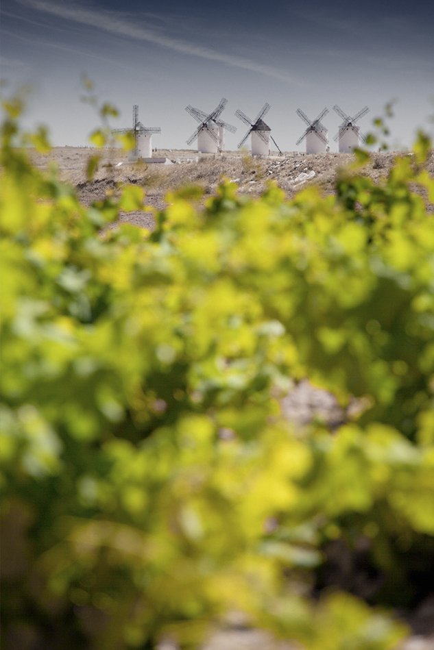 Vinos de La Mancha - El Origen del Vino